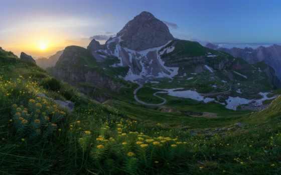гора, цветы, scenery, mount, лепестки, boa, экология, verdure, zealand, colorful, bloom