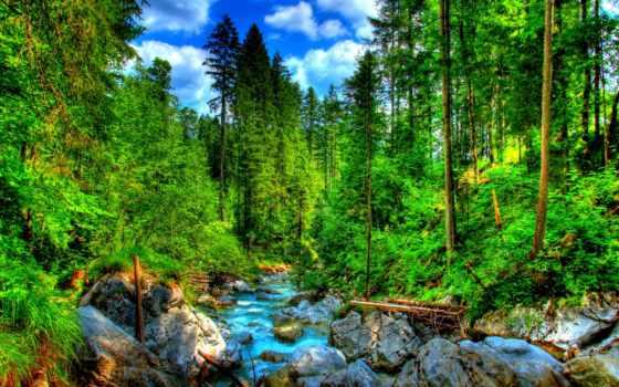 german, лагос, бавария, bosques, ramsau, сказочный, montañas, лес, cascadas, ríos, природа,