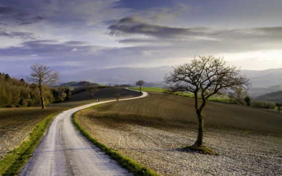 дорога, весна, полях, one, click, margin, trees, небо,