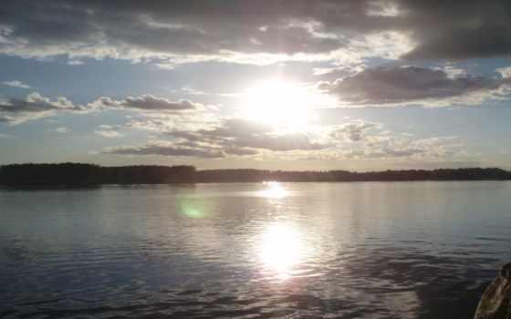 рассвет, озеро, sói, nhân, блог, với, животных, xinh,