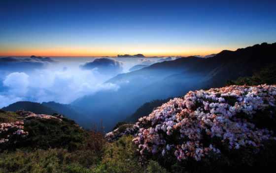 cvety, горы, туман, закат, небо, утро, ночь, вечер, холмы, горах, oblaka,