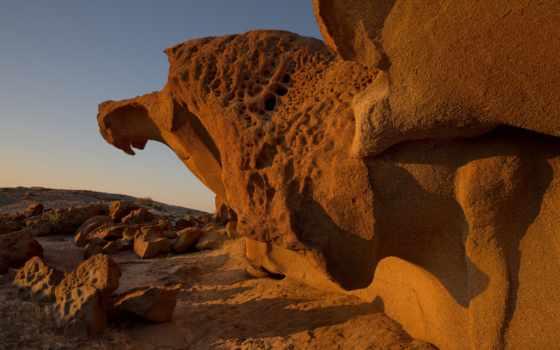 rock, fondos, камни, птица, imágenes, piedras, página, камень,