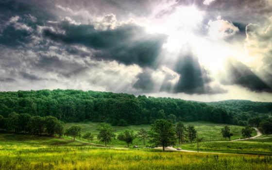 природа, широкоформатные, лес, под, нас, окружает, которая,