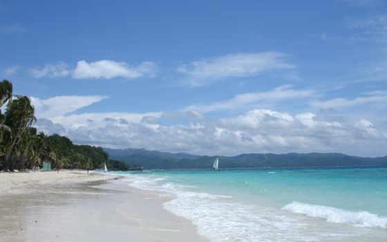 рай, pack, tropical