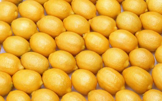 лимоны, купить, текстура, лимон, оптом, цитрус, от, предложений,
