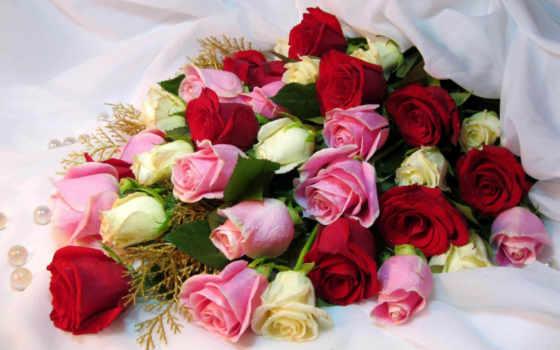 день, любви, цветы, semi, рождения, верности, макки, love, заказать, под, волгограде,