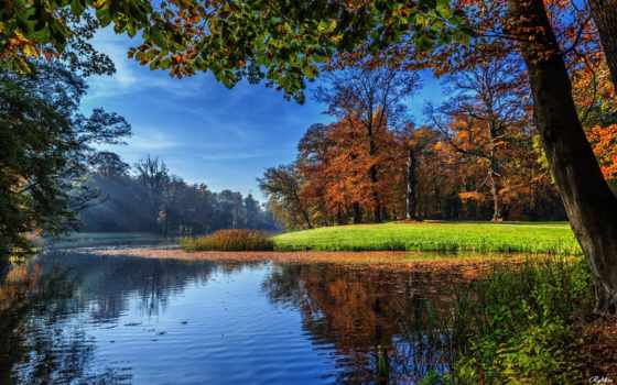природа, holland, trees, free, осень, desktop, нидерланды, landscape, darthuizen,