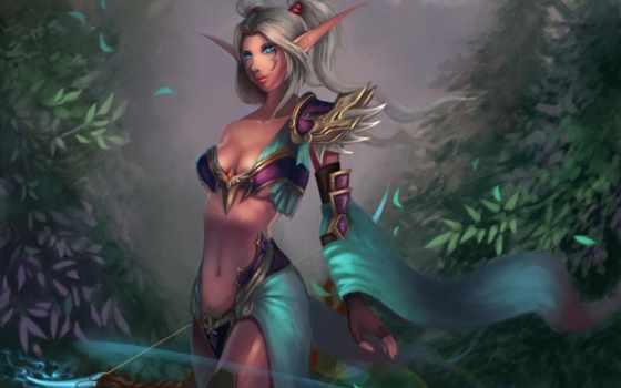 warcraft, world, hunter, wow, девушка, art, эльф, ночь, гном,