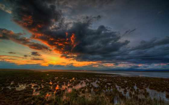 swamp, закат, desktop
