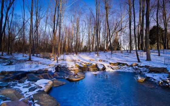 mùa, cánh, frozen, phong, природа, winter, images,