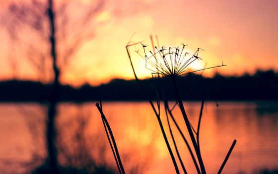 закат, природа, восход, mobile, vintage, high, definition, wide, wxga,