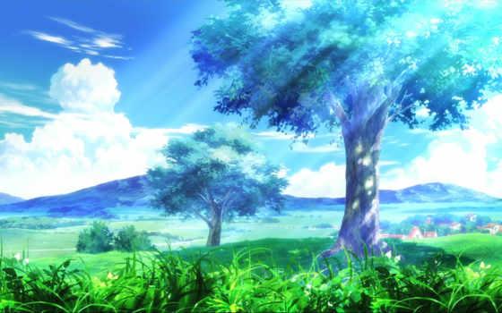 трава, облака