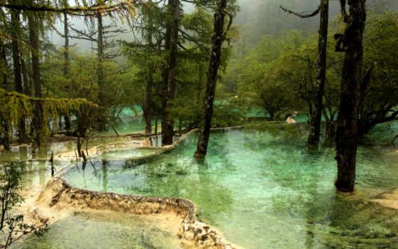 park, kína, china, trees, jiuzhaigou, водопады, природа, водопадами,