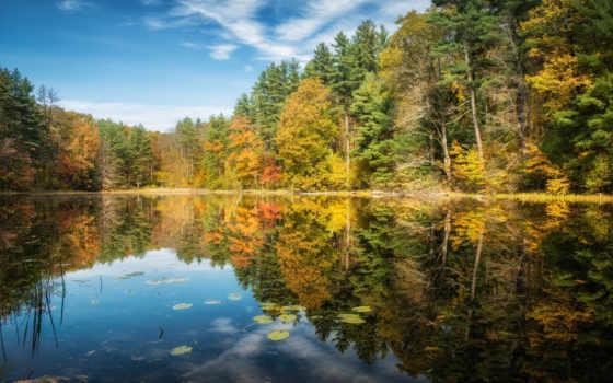 природа, лес, осень, красивые, пейзажи -, iphone, trees, отражение,