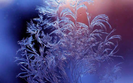 узор, steklo, moroznyi, зимний, zima, moroz, okno, razreshenie