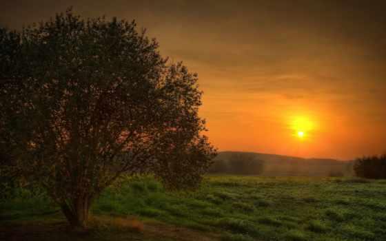 природа, закат, mystical, mysticism, красавица, поле, mystic, sun,