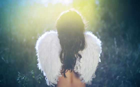 angel, девушка, крылья, крыльями, высоком,