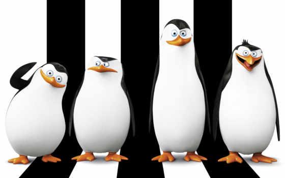 миньоны, пингвины, страница
