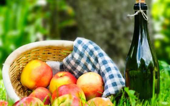 растровый, пикник, яблоки, клипарт, траве, корзина, трава, графики, портал, дизайна, вектор,