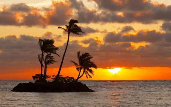 закат, остров, palm, море, trees, небо, clouds, sun,