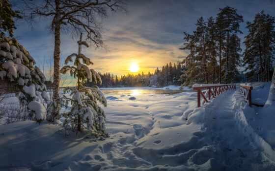 winter, new
