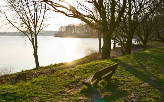 скамейка, деревя, озеро