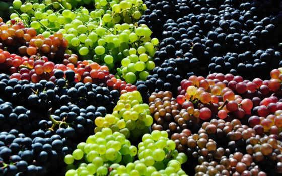 виноград, красивые, качественные