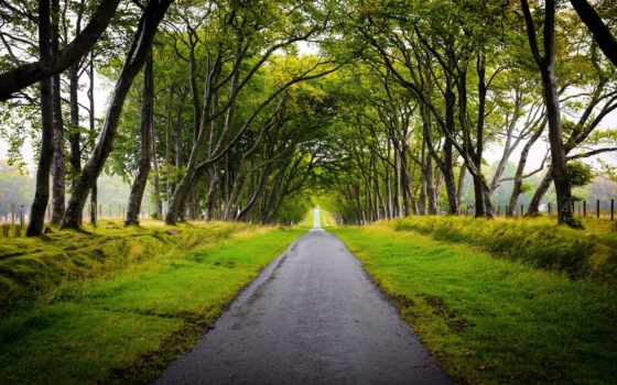 шотландия, landscape, scotland