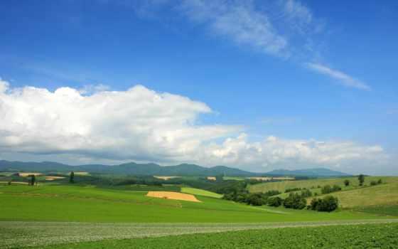 поле, небо, clouds