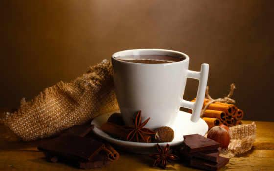 chocolate, hot, напиток, cinnamon, anise, дольки, бадьян, еда, пряности, coffee, орехи,