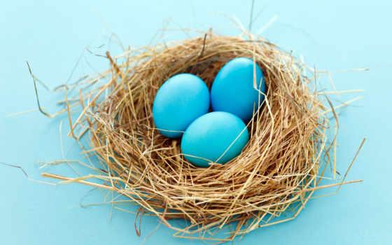 яйца, пасхальные, easter, manchester, nest, blue, магия, counselling,