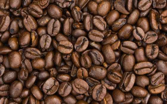coffee, кафе, новости, день, granos, собой,