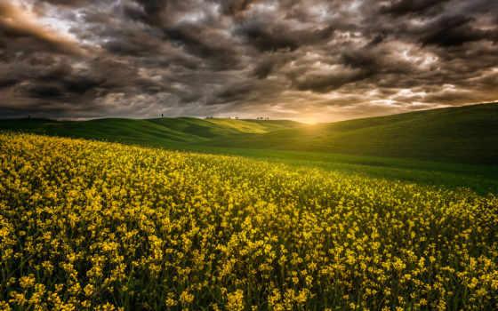 тучи, природа, lightning, sun, images, cvety, штаты,