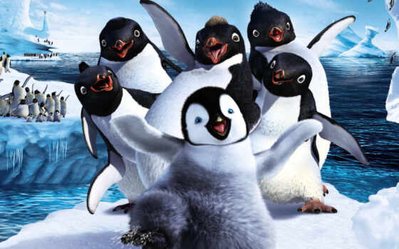 пингвинов, penguins, world
