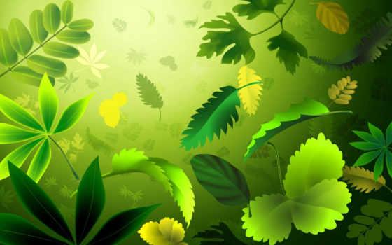 fondos, листья, green