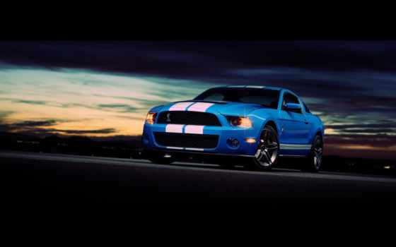 ford, shelby, mustang Фон № 56116 разрешение 2560x1600