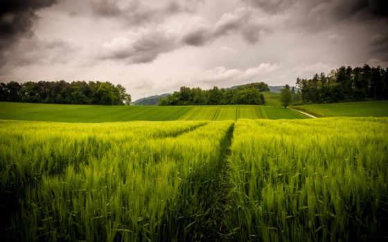 картинка, oblaka, высоком, небо, качестве, отличном, разрешений, поля, горы, природа,