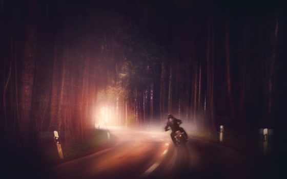 мотоцикл, ночь, лес, дорога, car, cosmos, природа, главное, рисованный, еда, интерьер