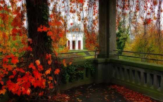 осень, landscape, беседки, park, беседка, природа, trees,