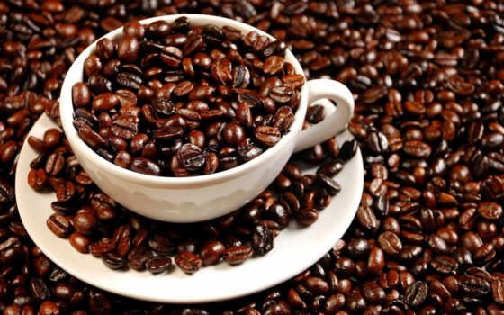 aslus, yang, coffee, dengan, ди