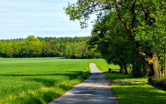дорога, графика, природа, заставки, пейзажи -, уходящая, дома, даль, дерево,