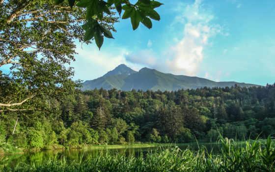 природа, горы, деревья Фон № 79383 разрешение 2560x1600