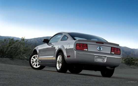 mustang, пони, ford, package, car, кр,