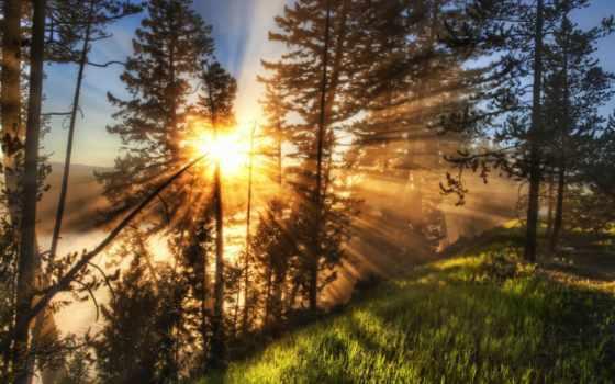 закаты, алые, pinterest, об, sunsets, кб, sunshine, текст, банка,