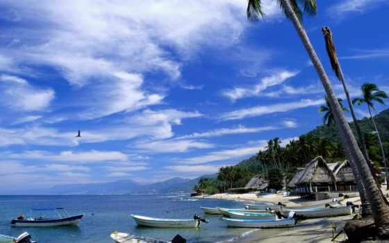 verano, fondos, paisajes, vacaciones, pantalla, imágenes, naturaleza, palmas,