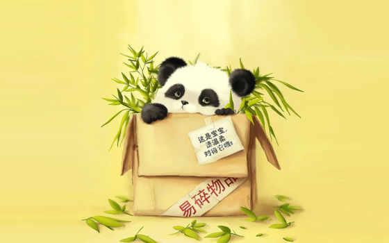 панда, бамбук