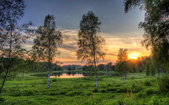 природа, эстония, эстонии, поле, березы, озеро, rouger, трава, рассветы, закаты,