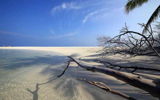 песок, пляж, sun, лежак, небо, планшетный, телефон, ноутбук,
