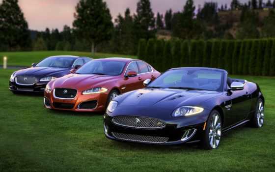 cars, sports, роскошных, автомобилей, страница, листь, tagged, jaguar, дек,