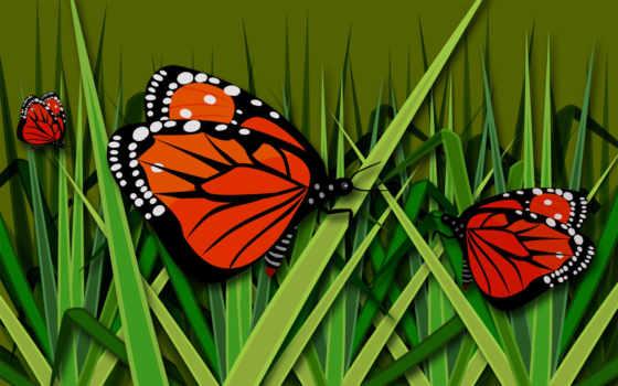grass, butterfly